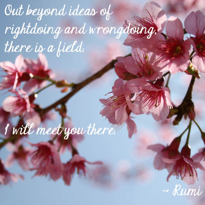 Rumi inspirational quote_doi_suthep_coffee_break_cherry blossoms