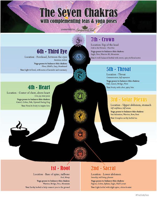The 7 Chakras Every Yogi Must Know Ambuja Yoga
